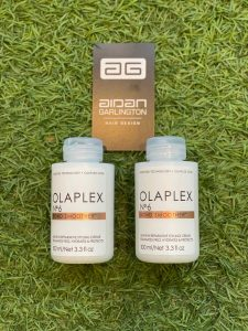 olaplex bond smoother bristol